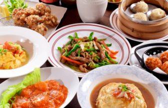 多種の中華料理