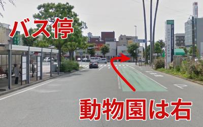 バス停と曲道
