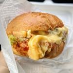 【大牟田】ハンバーガー好き必見!Mr.kitchenのバーガーが歓喜するレベル!