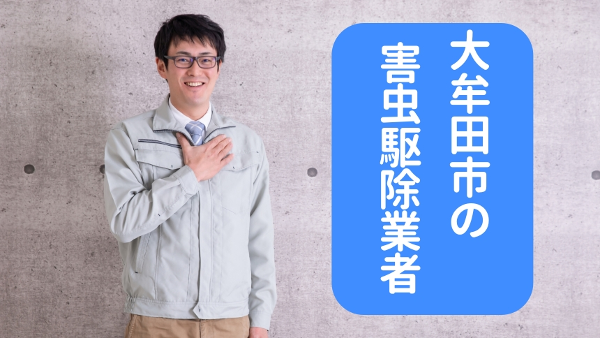 大牟田市の害虫駆除業者